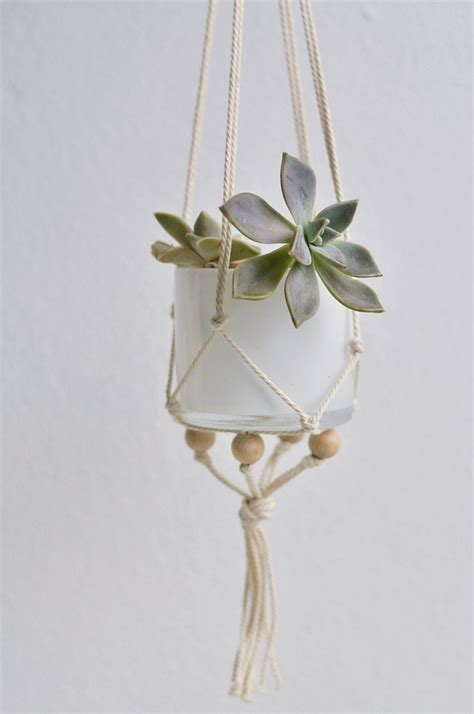 Diy Macrame Plant Holder - 17 best images about plants indoor hanging diy pots