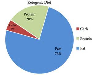 ketosis and the ketogenic diet a low carb solution to fat