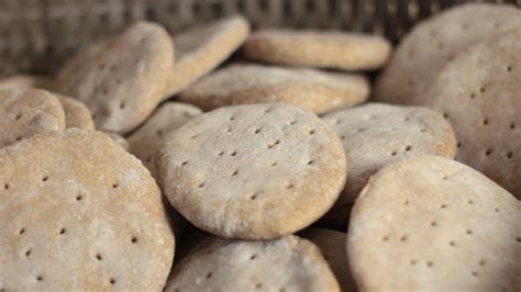 Shelf Of Biscuits by How To Make Tack Biscuits With A 50 Year Shelf