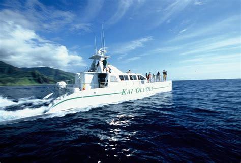 ocean joy catamaran pleasant activities view page