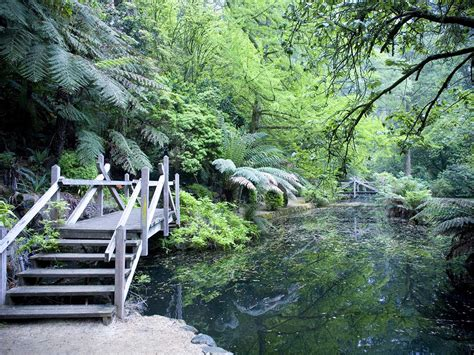 Landscape Design Yarra Valley Scenic Attractions In The Dandenong Ranges Nature And