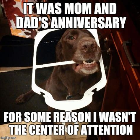 Funny Anniversary Memes - center of attention imgflip