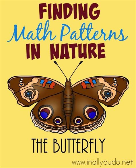 patterns in nature preschool 570 best holidays spring time images on pinterest