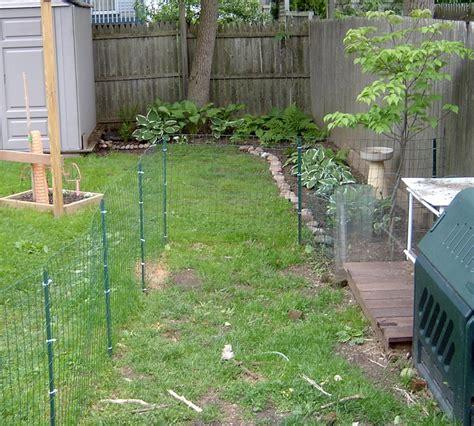 backyard dog fence dog fence and deck 8 steps