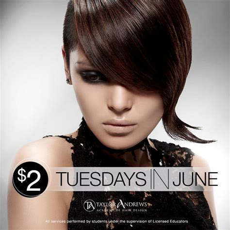 haircut deals on tuesday 25 best salon specials images on pinterest lounges