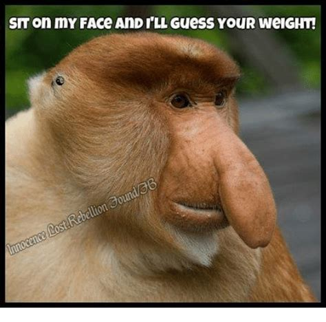 Sit On My Face Meme - sit on my face and ill guess your weight aoundeb rebellion