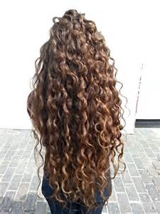 can you perm curls into bottom of hair 25 best ideas about natural curly hair on pinterest