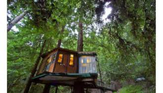 Treehouse Vacations Gallery For Gt Redwood Forest Tree House