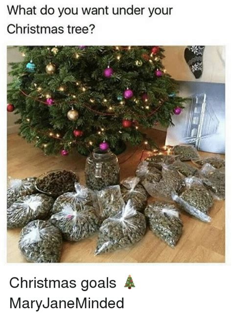 what do you want under your christmas tree christmas