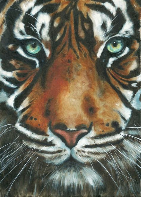 tiger paint 25 best ideas about tiger painting on tiger