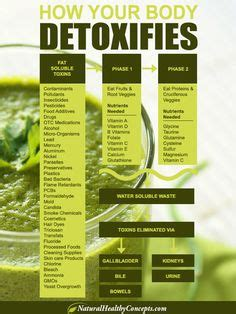 Guide For Detoxing After by 1000 Images About Detox Cleanse The On