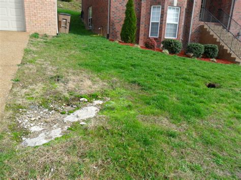 How To Fix Drainage Problem In Backyard Downspout Extensions Downspout Drainage Service And