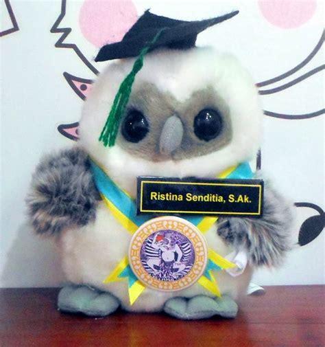 Boneka Wisuda Owl jual boneka boneka wisuda owl universitas airlangga kado