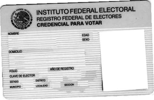 formato credencial de elector montaje fotografico credencial de elector pixiz