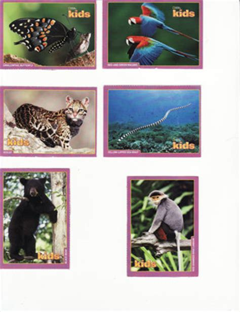 national geographic cards free 6 national geographic trading cards random