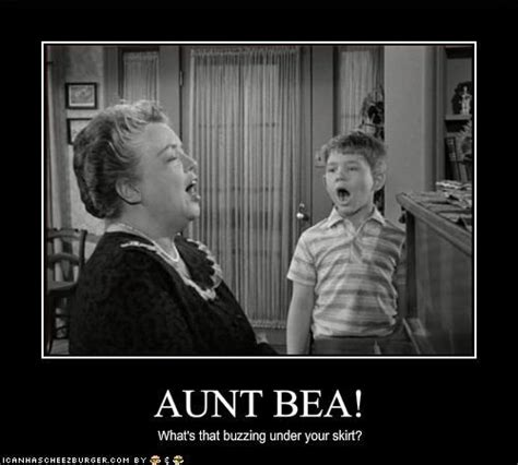 Aunt Meme - aunt bee meme google search things that make me laugh