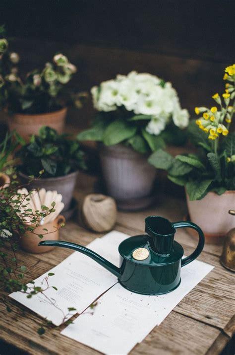 green plant pot waterer indoor watering  plants