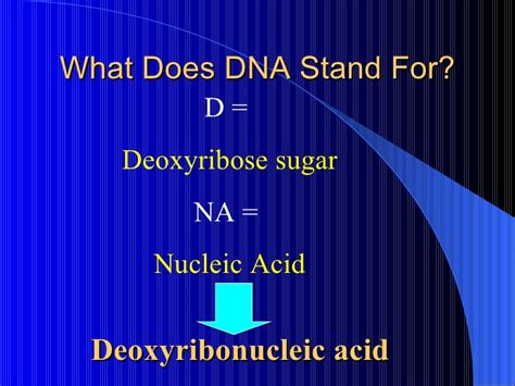 what does in dna