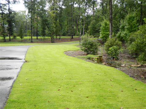 larson driveway landscaping quality creative landscaping llc