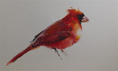 sue churchgrant daily painting cardinal watercolor