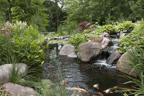 aquascape ponds aquascape your landscape designing your dream pond