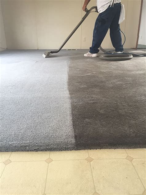 upholstery cleaning tucson carpet savers tucson az carpet and upholstery cleaners
