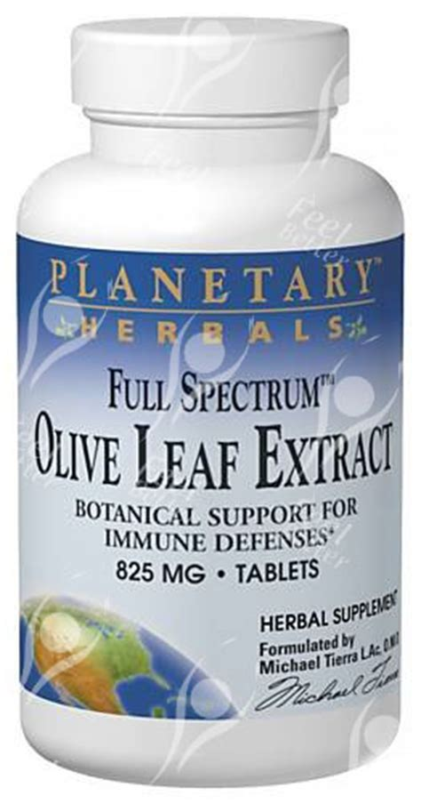 Olive Leaf Extract Detox Symptoms by Olive Leaf Extract 825mgx60 Dose Bestseller