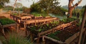 raised vegetable beds on legs advantages and design ideas