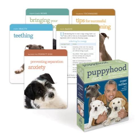 puppyhood a trained puppy a happy owner the buy special books puppyhood deck 50 tips for raising