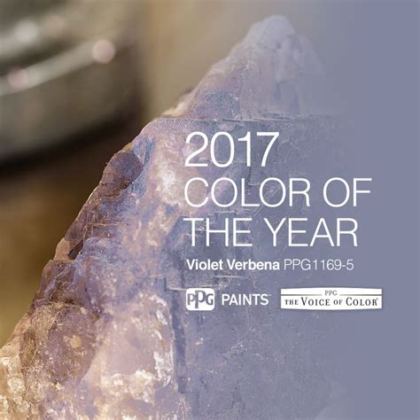 2017 paint color of the year 25 best ideas about color of the year on