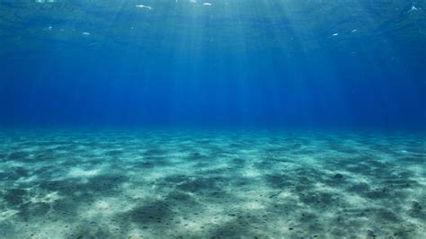 Sea Floor by Researchers Discover Freshwater Reserves