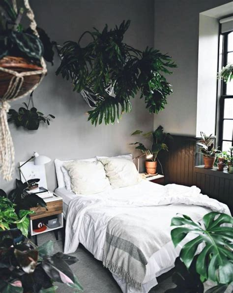 Garden Bedroom Decor The 25 Best Bedroom Plants Ideas On Pinterest Plants In Bedroom Bedroom Plants Decor And