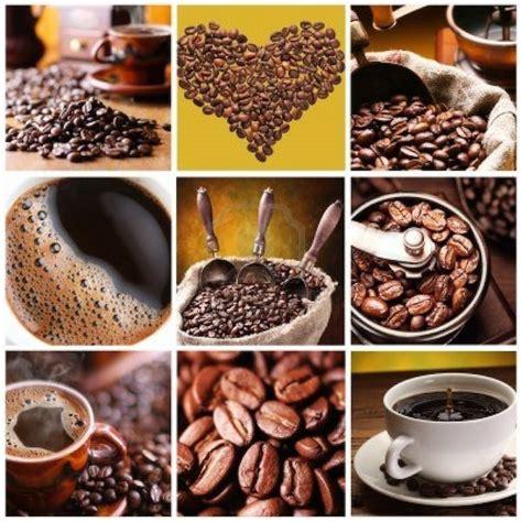 Buku Bugar Dan Cantik Dengan Terapi Air Putih Dan Infused Water Rz tips minum kopi 7 jenis kopi dari cappuccino hingga mocha