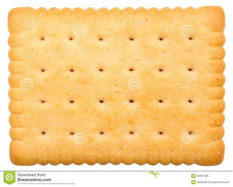 pattern beatbox medium milk biscuit isolated stock photo image of group closeup