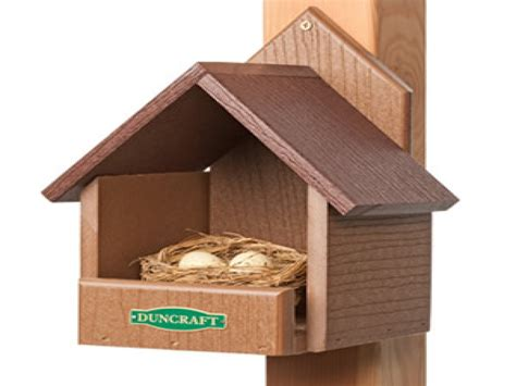 Cardinal Bird House Cardinal Bird House Dimensions Cardinal Bird House Plans