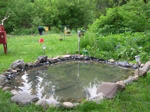 small fish pond design ideas pool design ideas