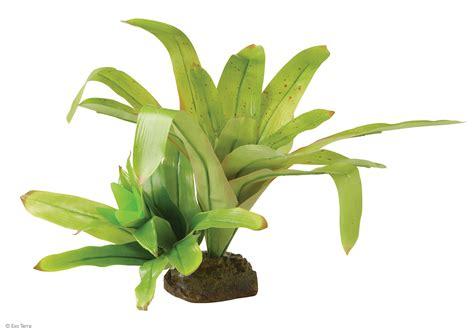 Home Lighting by Exo Terra Bromelia Smart Plant Dart Frog Plant