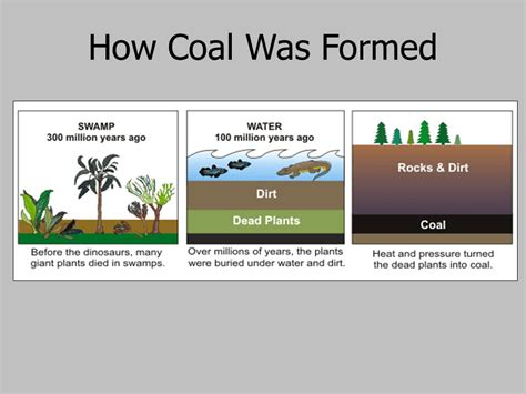 coal is shiny black rock with energy ppt