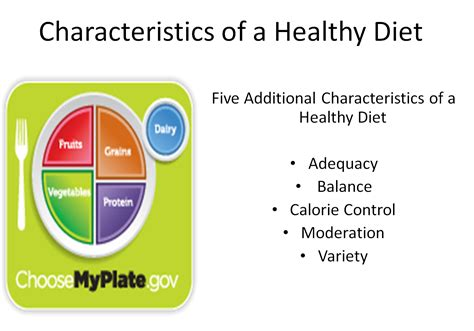Dieting You The 5 Factor Diet by Understanding The Impact Of Nutrition