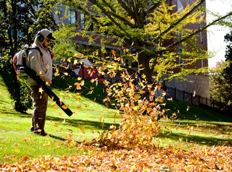 Ramos Landscaping Professional Landscaping Services Fall Cleanup Landscaping