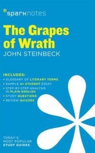 grapes of wrath key themes the grapes of wrath sparknotes literature guide series