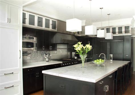 contemporary kitchen remodel chicago chicago home remodeling