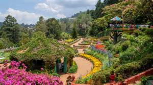 Flower Gardens In India 10 Fabulous Flower Shows In India You Must Not Miss India