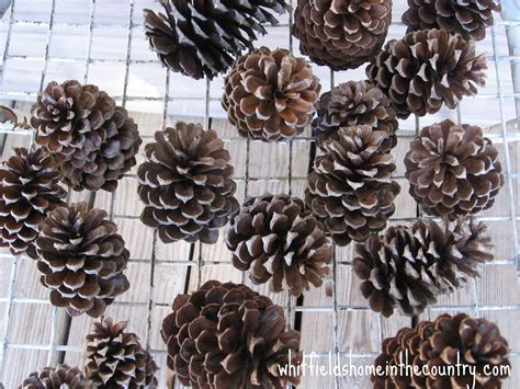 diy pine cone ornaments whitfield s home in the country diy pine cone ornaments