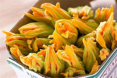 ricetta di fiori di zucca in pastella fiori di zucca in pastella senza uova