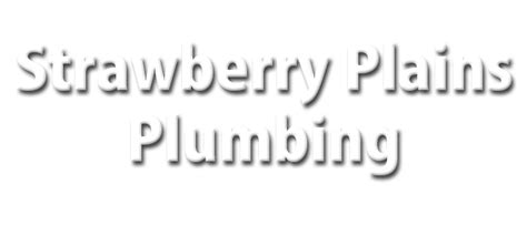 Live Green Plumbing Services Llc by Strawberry Plains Plumbing Services Knoxville Plumbing