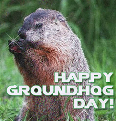groundhog day vs happy day news from 2 1 13