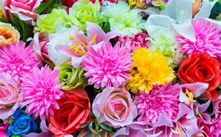 Which Type Of Flower Are You Playbuzz Flowers And Pictures Of Colorful Flowers