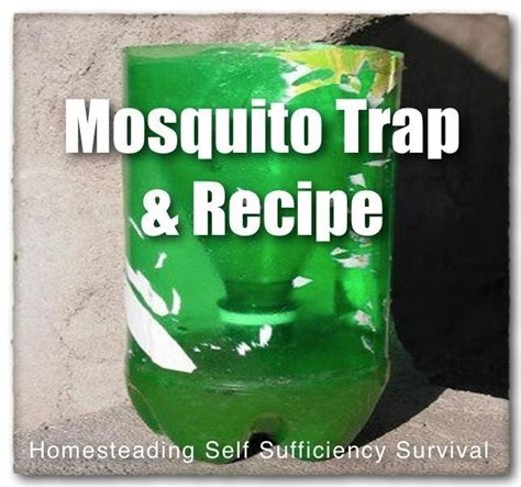 mosquito trap diy yeast mosquito trap mosquitoes and warm on