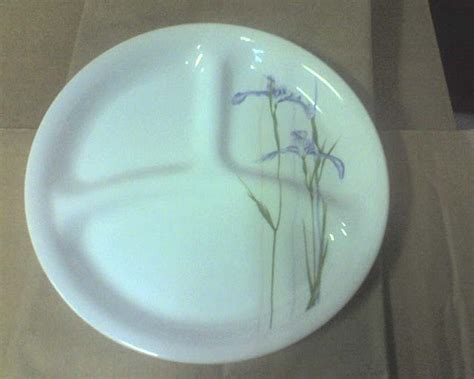 plates with separate sections corelle shadow iris 8 5 divided plate 5 99 usd zen